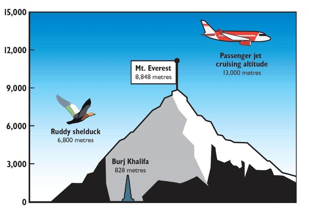 vì sao máy bay thương mại thường tránh bay qua dãy himalaya