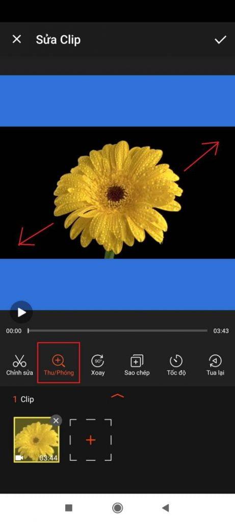 cách tạo video vuông có tiêu đề bằng điện thoại